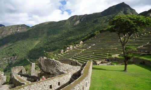 Zdjęcie PERU / Cuzco / Machu Picchu / Tarasy