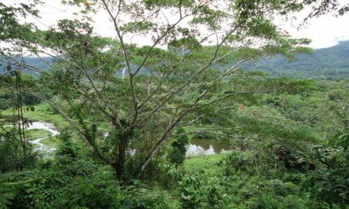 Zdjecie PERU / Madre de Dios / okolice Salvacion / Jeziorko w dżungli