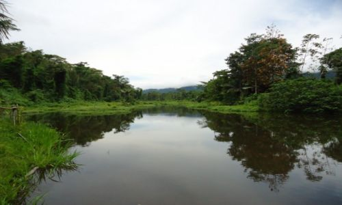 Zdjęcie PERU / Madre de Dios / okolice Salvacion / Jeziorko