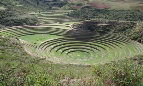 Zdjęcie PERU / Cuzco / Moray / Pola uprawne