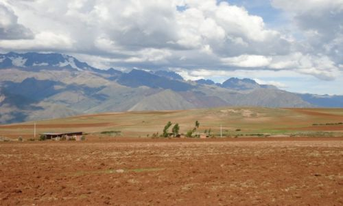 Zdjecie PERU / Cuzco / Moray / Pola uprawne