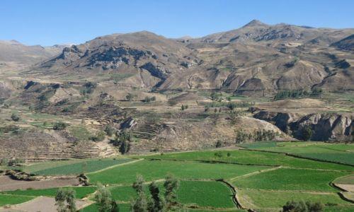 Zdjęcie PERU / Arequipa / okolice Chivay / Kanion Colca
