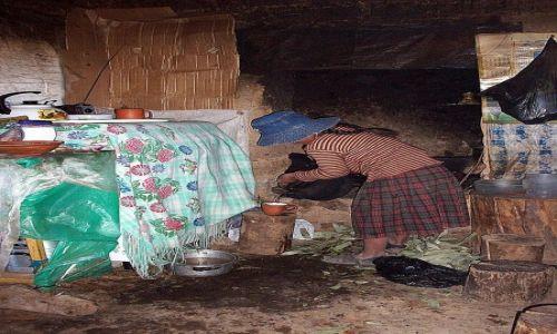 Zdjecie PERU / Jez.Titicaca / Wyspa Amantani / Będzie herbata z liści koki