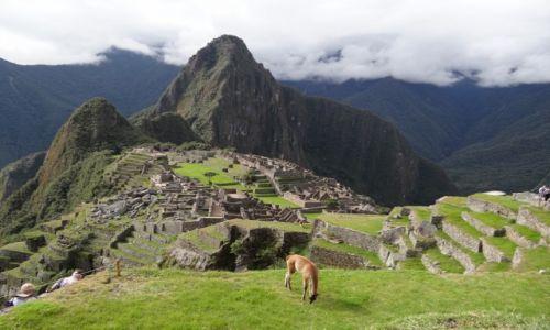 Zdjecie PERU / Machu Picchu  / Machu Picchu  / Zagubione miasto Inków
