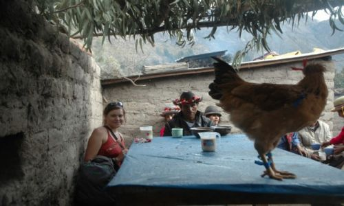 PERU / Arequipa / Cahuana / Kogut i chicha na stole. Imprezę czas zacząć