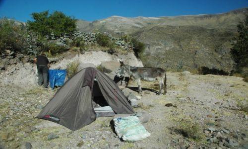 PERU / Arequipa / Puyca / Puyca. 3700 m. n.p.m. (zdj. do art.)