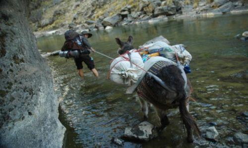 PERU / Arequipa / Peruwiańskie Andy / Nie każdy osioł boi się wody :) (zdj. do art)