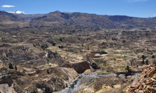 Zdjecie PERU / Kanion Colca. / Kanion Colca. / Cud Natury.