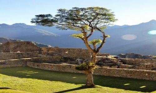 Zdjęcie PERU / Cordillera Vilcabamba / Machu Picchu / W porannym blasku