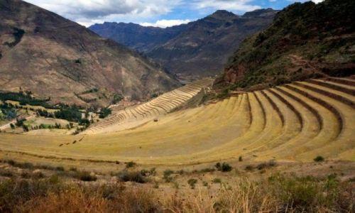 Zdjecie PERU / -Moray, Cusco / Pola uprawne w fazie wiosennej / Tarasy, uprawne pola.
