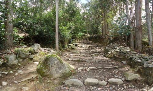 Zdjecie PERU / Ancash / okolice Huaraz / Inkaski szlak ...