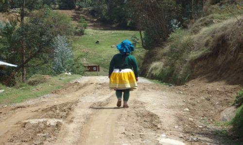 Zdjecie PERU / Ancash / okolice Huaraz / Llupa