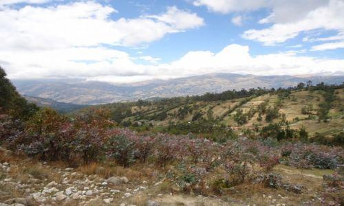 Zdjęcie PERU / Ancash / okolice Huaraz / W górach (3)
