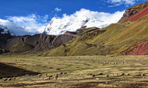 Zdjęcie PERU / Cusco  / Ausangate  / Trekking wokół pięknej góry Ausangate