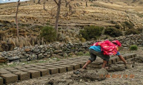 Zdjęcie PERU / Cusco  / San Blas /  Cegła adobe. Budowa od podstaw