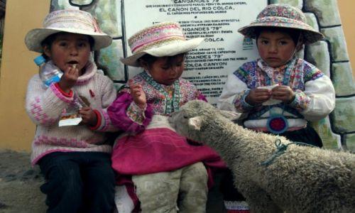 Zdjęcie PERU / Chivay / Chivay / Ja też chcę cukierka