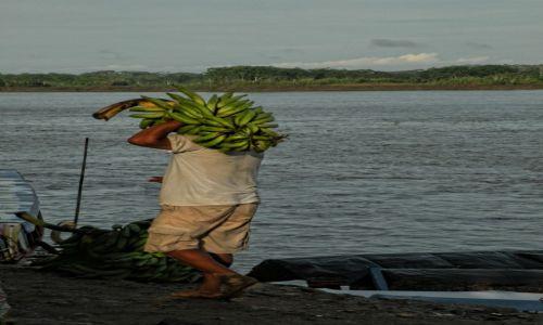 Zdjecie PERU / Iquitos / Nauta / Bananowy świat