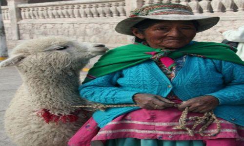 Zdjecie PERU / Chivay / Chivay / Najlepsza przyjaciółka