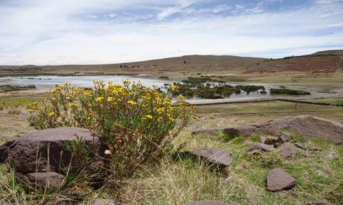 Zdjęcie PERU / Puno / Sillustani / Krajobraz (2)