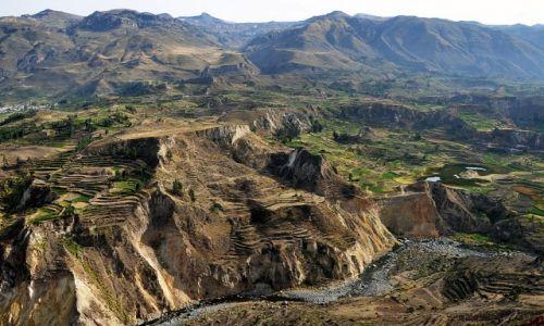Zdjęcie PERU / Arequipa / Kanion Colca / Colca