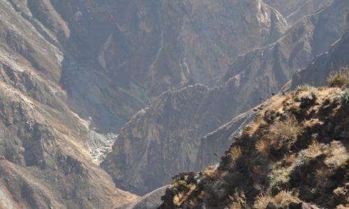 Zdjecie PERU / Chivay / Krzyż Kondora / Kanion rzeki Co