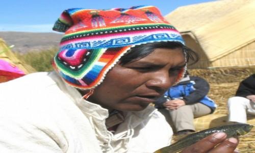 Zdjecie PERU / - / Jezioro Titicaca, wyspa Uros / Niestety, nie s