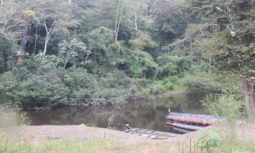 Zdjecie PERU / Iquitos / Amazonia / selva3