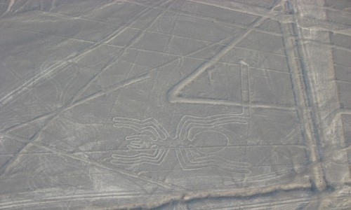 Zdjecie PERU / Andy / Nazca z lotu ptaka / Pajączek i nie tylko