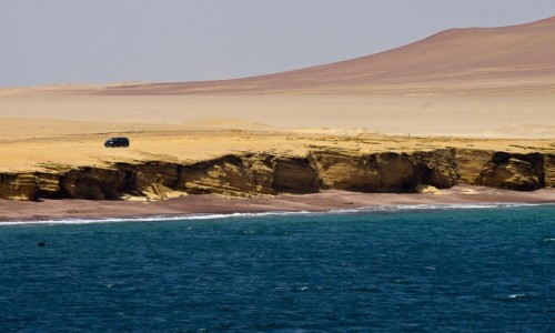 PERU / Paracas / NP Paracas / Na półwyspie Paracas