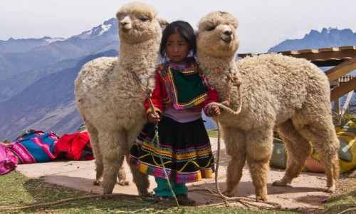 PERU / Święta Dolina Inków / okolice Cusco / 3 babies