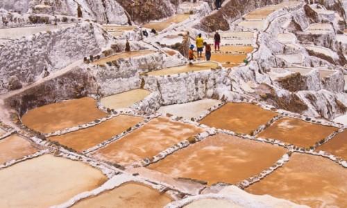 Zdjęcie PERU / Święta Dolina Inków / Okolice Maras / Salineras de Maras