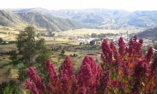 Zdjecie PERU / Cuzco / Cuzco / Inkaskie doliny