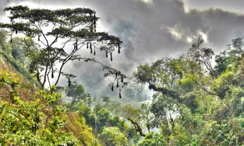 Zdjęcie PERU / Vilcabamba / Vilcabamba / Dolina Duchów