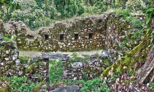 Zdjecie PERU / Vilcabamba / Vilcabamba / Zatopione w gąszczy ruiny Wielkiej Vilcabamby