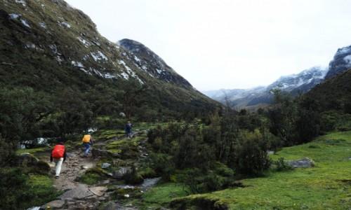 Zdjecie PERU / Andy / Cordillera Blanca / Santa Cruz Trek