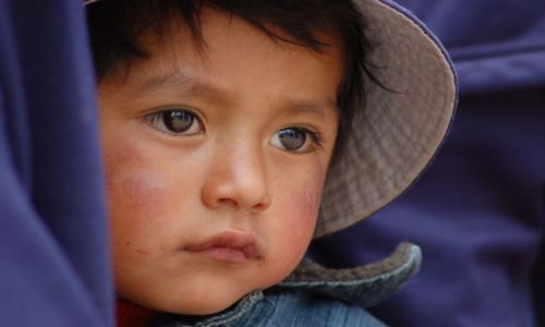 Zdjecie PERU / Cusco / Cusco / Luisito - jeszc