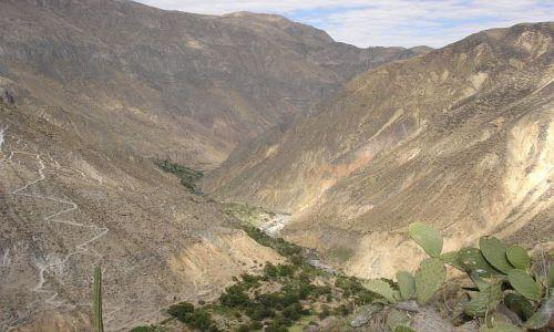 Zdjecie PERU / brak / Canion Colca / canion colca