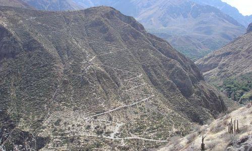 Zdjecie PERU / brak / Canion Colca / sciezyna trekowa:)