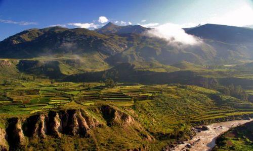 Zdjęcie PERU / brak / kanion COLCA / ***