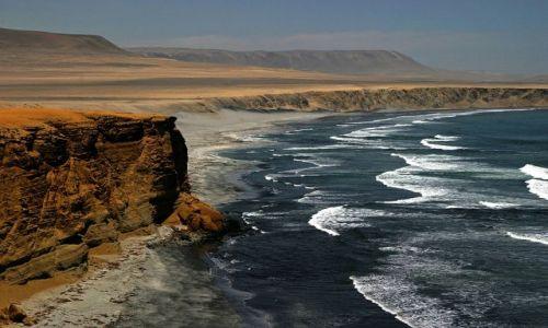 Zdjęcie PERU / brak / Wybrzeże w pobliżu Pisco / Widoczek 1