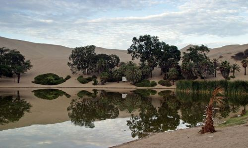 Zdjecie PERU / brak / Oaza Huacachina / Piaskowica 2