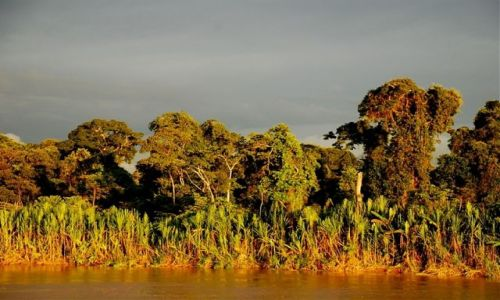 PERU / polnocne Peru / Amazonka / ciezkie, deszczowe chmury nad dzungla