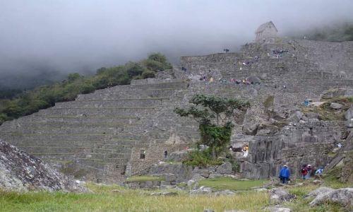 PERU / brak / Machu Picchu / W ruinach Machu Picchu