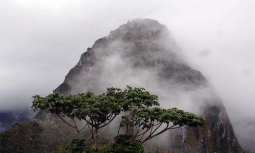 Zdjecie PERU / brak / Machu Picchu / Widok na Wayna Picchu