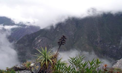 PERU / brak / Machu Picchiu / Widok na gory z drogi na Machu Picchu