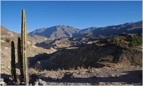 Zdjęcie PERU / Canion Colca / Canion Colca / Canion COLCA