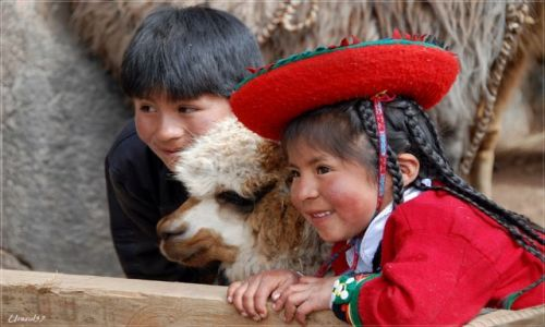 Zdjecie PERU / Cusco / Cusco / Portrecik z lamą