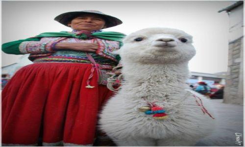 Zdjecie PERU / Chivay / Chivay / Spotkane na targu
