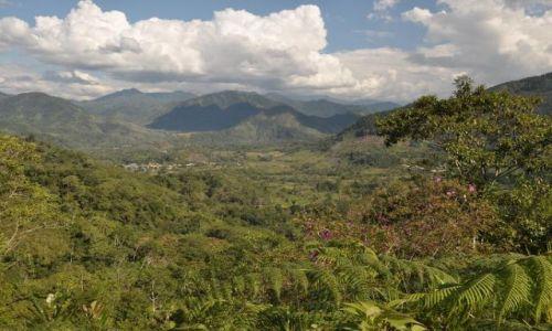 Zdjecie PERU / Amazonia / Amazonia / Amazonia