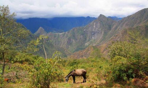 Zdjecie PERU / brak / pod szczytem Machu Picchu / cisza i spokoj